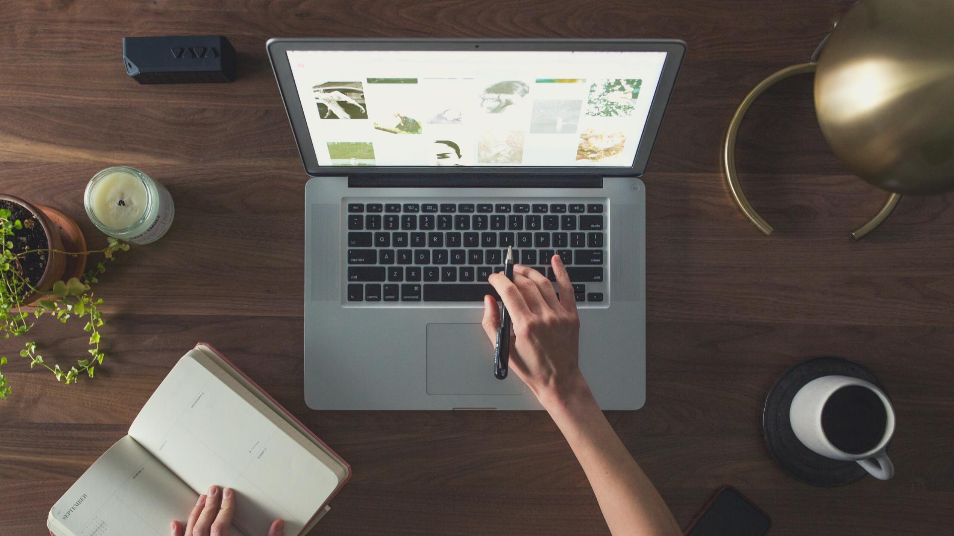 WordPress für Fortgeschrittene: Einführung ins neue Dashboard *ONLINE*