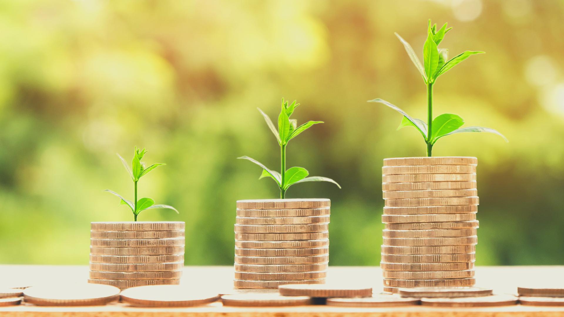 Buchhaltung und Unternehmenssteuern | online